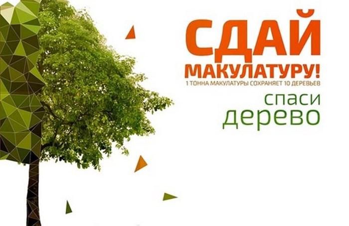 Сдай макулатуру спаси дерево калужская область кг макулатуры цена