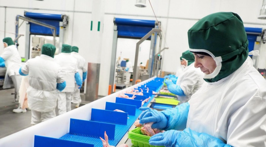 Завершена модернизация птицефабрики Группы «ПРОДО» вКалужской области