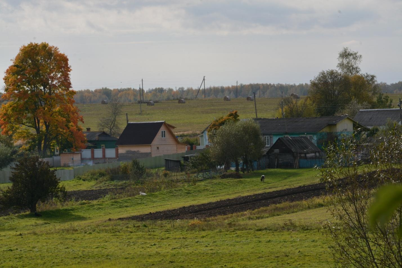 Присланное фото из деревень — pic 2